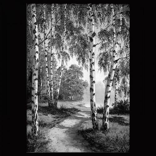 Пейзаж В15