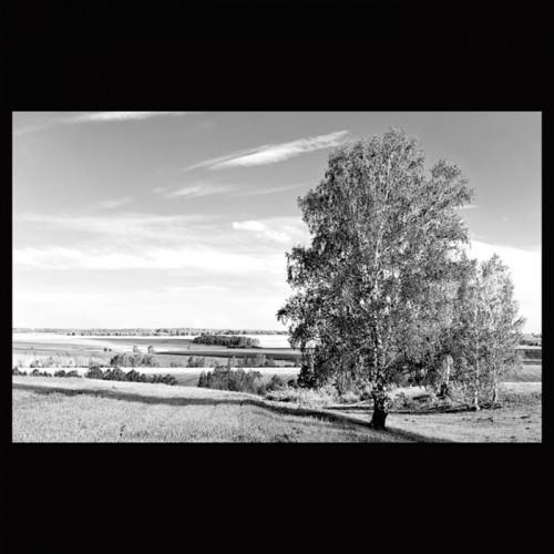 Пейзаж В17
