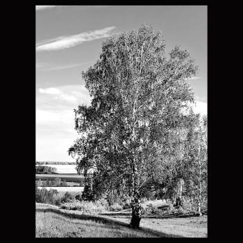 Пейзаж В18