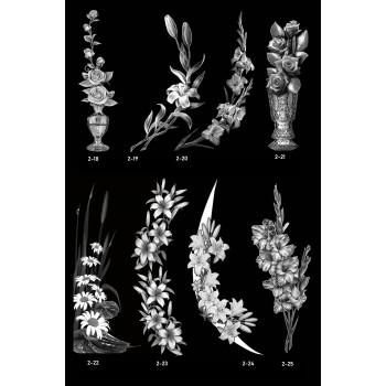 Цветы 18-24